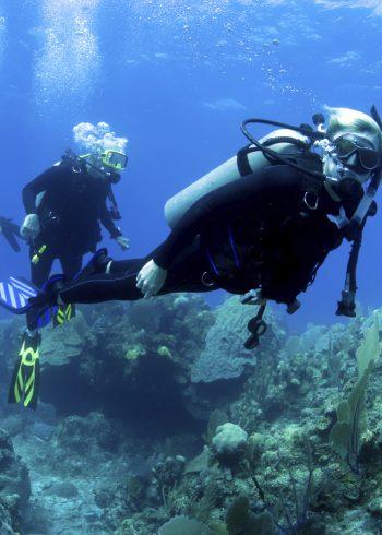 diving01